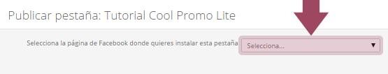 Publicar Cool Promo Lite: Seleccionar página de Facebook